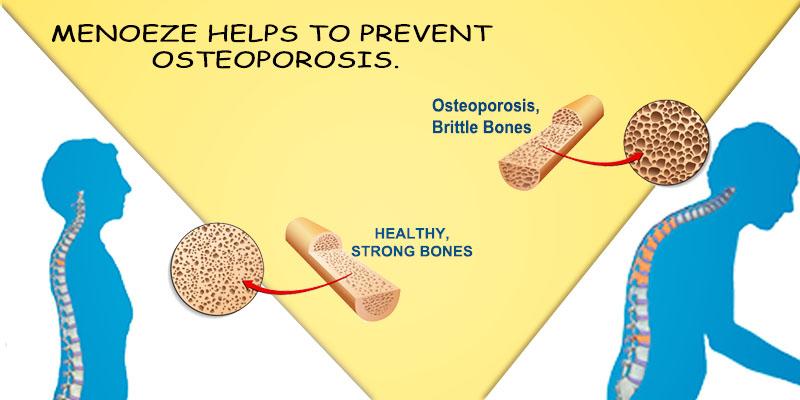 Menoeze helps in osteoporosis
