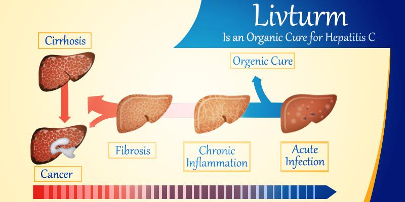 Livturm for helping in Hepatitis C cure
