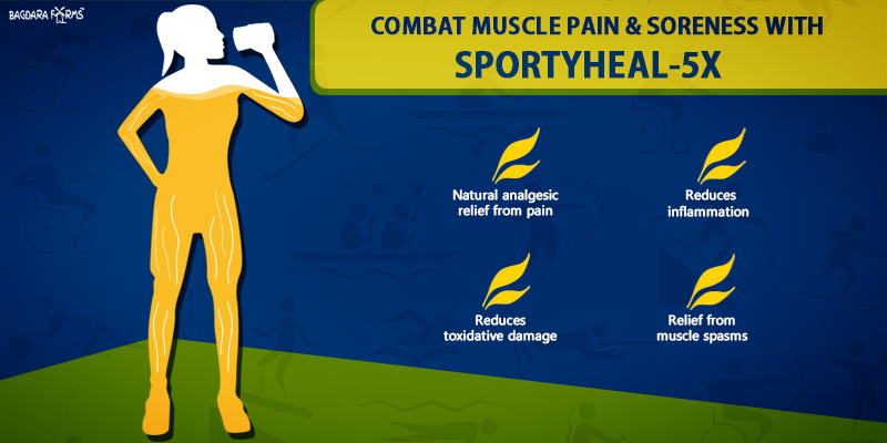 SPORTYHEAL-5X supplement for sports enthusiasts
