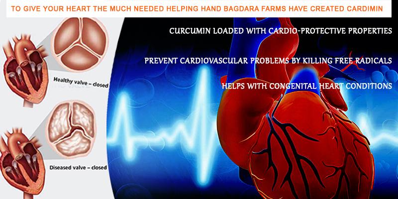 Organic Curcumin For Good Heart Health