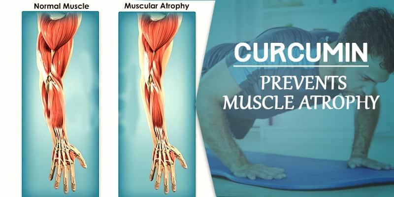 muscle relaxant Sportyheal-5X