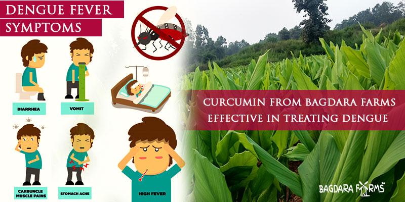 prevent dengue with immunoturm