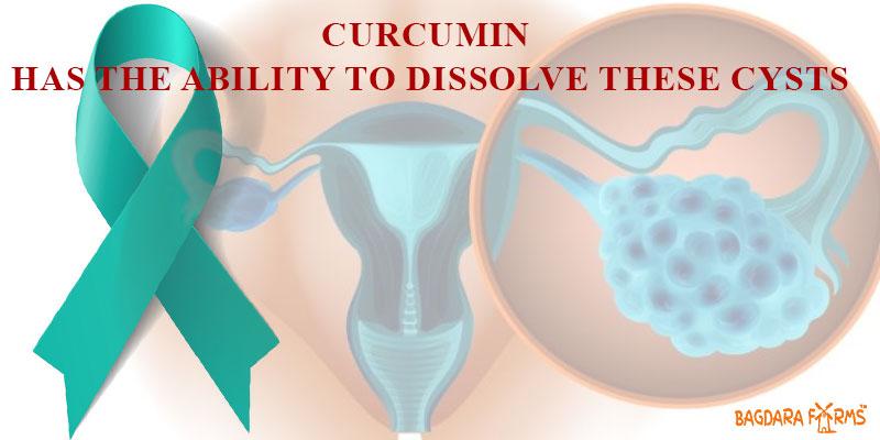 Beat Ovarian Cancer with Curcumin