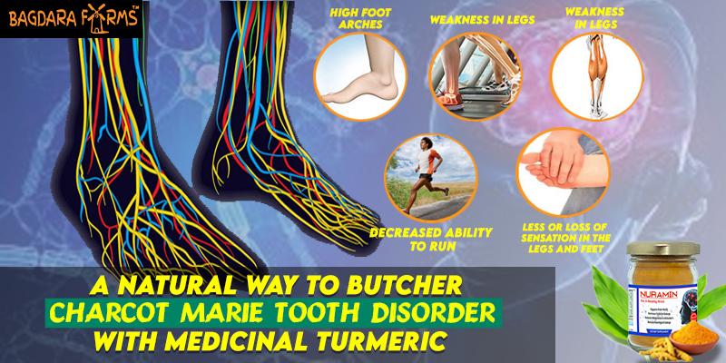 Medicinal Turmeric , Cervical Cancer , cervix